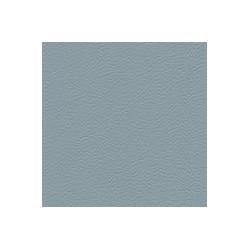 Gémini blue fog
