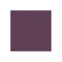 Gémini Purple